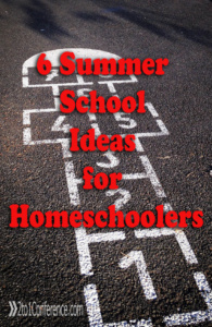 Here are 6 Summer School ideas for homeschoolers that will keep learning alove and enjoyable over the summer.
