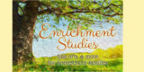 Enrichmentstudies